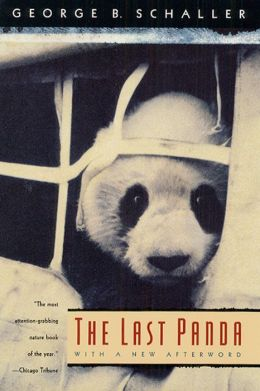 The Last Panda
