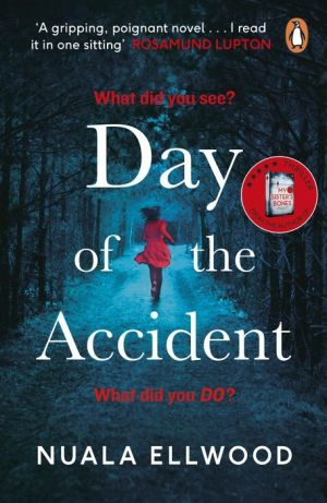 Book Day of the Accident