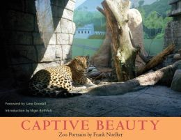 Captive Beauty: Zoo Portraits
