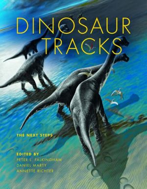Dinosaur Tracks: The Next Steps