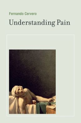 Understanding Pain: Exploring the Perception of Pain