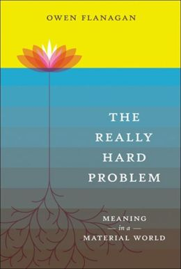 The Really Hard Problem: Meaning in a Material World