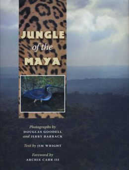 Jungle of the Maya