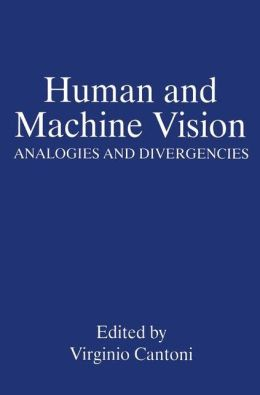 Human and Machine Vision: Analogies and Divergencies
