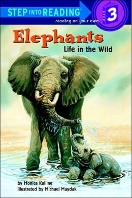 Elephants: Life in the Wild