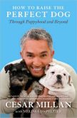 Book Cover Image. Title: How to Raise the Perfect Dog:  Through Puppyhood and Beyond, Author: Cesar Millan