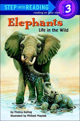 Elephants: Life in the Wild