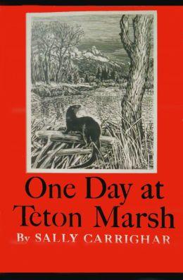 One Day At Teton Marsh