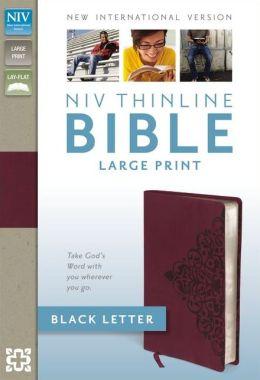 NIV Thinline Bible, Large Print Zondervan