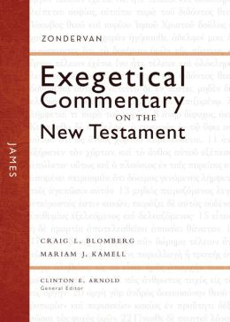 James: Zondervan Exegetical Commentary on the New Testament