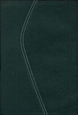 TNIV Zondervan Study Bible, Black