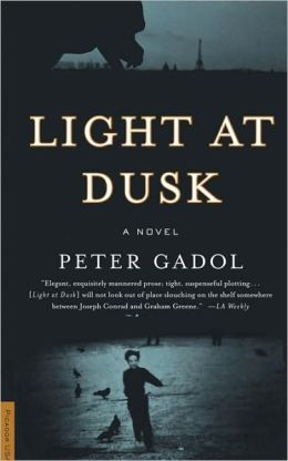 Light at Dusk: A Novel