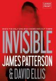 Book Cover Image. Title: Invisible, Author: James Patterson
