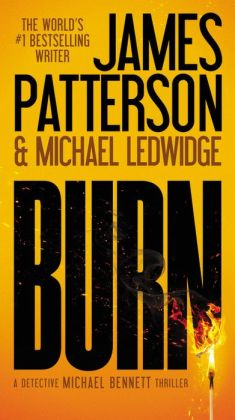 Burn (Michael Bennett Series #7)