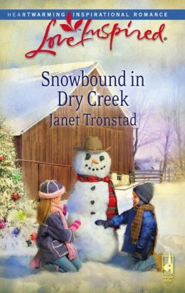 Snowbound in Dry Creek (Love Inspired Series)