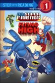 Book Cover Image. Title: Flying High (DC Super Friends), Author: Nick Eliopulos