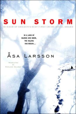 Sun Storm (Rebecka Martinsson Series #1)