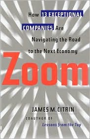 Zoom: How 12 Exceptional Companies Are Navigating the Road to the Next Economy