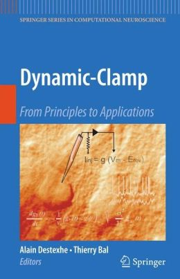 Dynamic-Clamp: From Principles to Applications