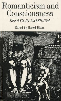 Romanticism and Consciousness: Essays in Criticism
