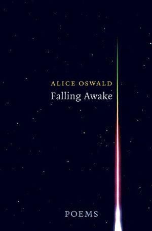 Falling Awake: Poems