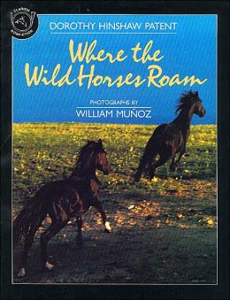 Where the Wild Horses Roam