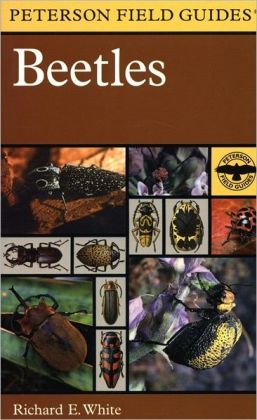 A Field Guide to the Beetles: of North America
