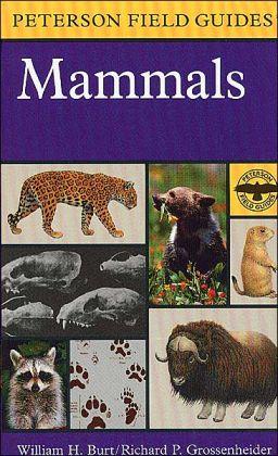 A Field Guide to Mammals: North America north of Mexico
