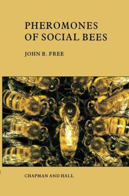 Pheromones of Social Bees