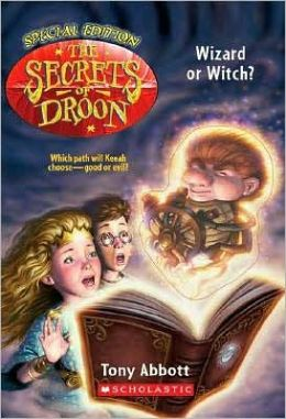 Wizard or Witch (Secrets of Droon Special Edition Series #2)