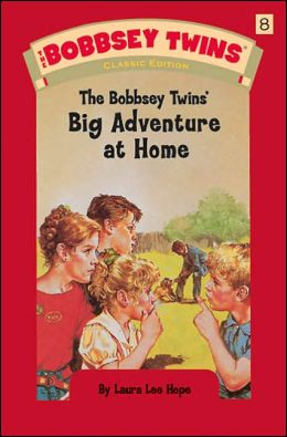 Bobbsey Twins 08: The Bobbsey Twins' Big Adventure at Home