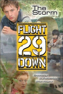 The Storm (Flight 29 Down Series #4)