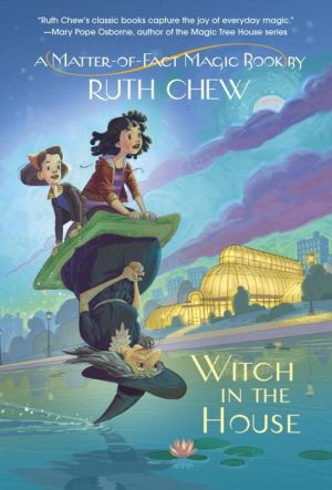A Matter-of-Fact Magic Book: Witch in the House