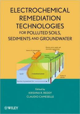 Electrochemical Remediation Technologies for Polluted Soils, Sediments and Groundwater