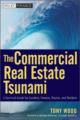 The Commercial Real Estate Tsunami: A Survival Guide for Lenders, Owners, Buyers, and Brokers