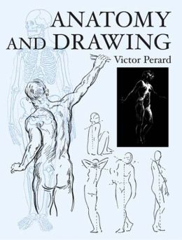 Anatomy and Drawing