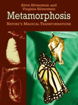 Metamorphosis: Nature's Magical Transformations