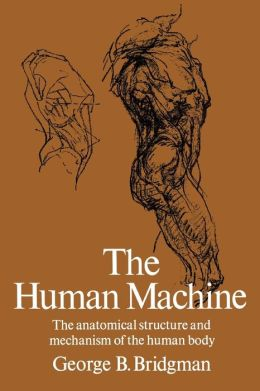 The Human Machine: The Anatomical Structure and Mechanism of the Human Body