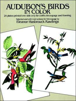 Audubon's Birds in Color