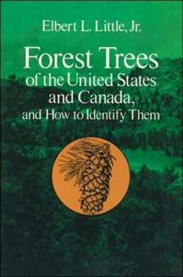 Forest Trees of the United States and Canada: And How to Identify Them