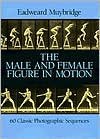 The Male & Female Figure in Motion