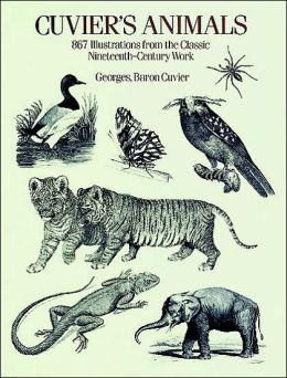 Cuvier's Animals: 867 Illustrations from the Classic Nineteenth-Century Work