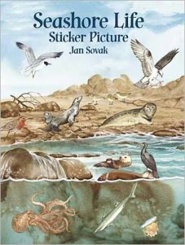 Seashore Life Sticker Picture: With 33 Reusable Peel-and-Apply Stickers