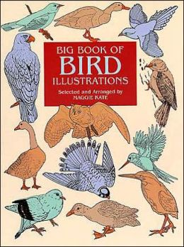Big Book of Bird Illustrations