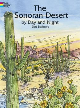 Sonoran Desert by Day and Night