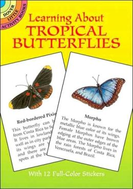 Learning About Tropical Butterflies (Dover Little Activity Books Series)