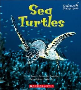 Sea Turtles (Undersea Encounters Series)