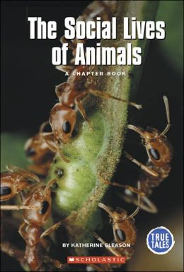 Social Lives of Animals: A Chapter Book