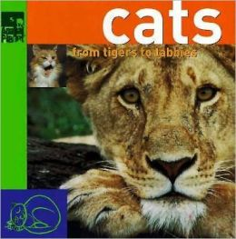 Cats: From Tigers to Tabbys