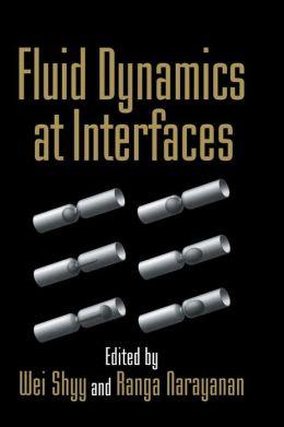 Fluid Dynamics at Interfaces
